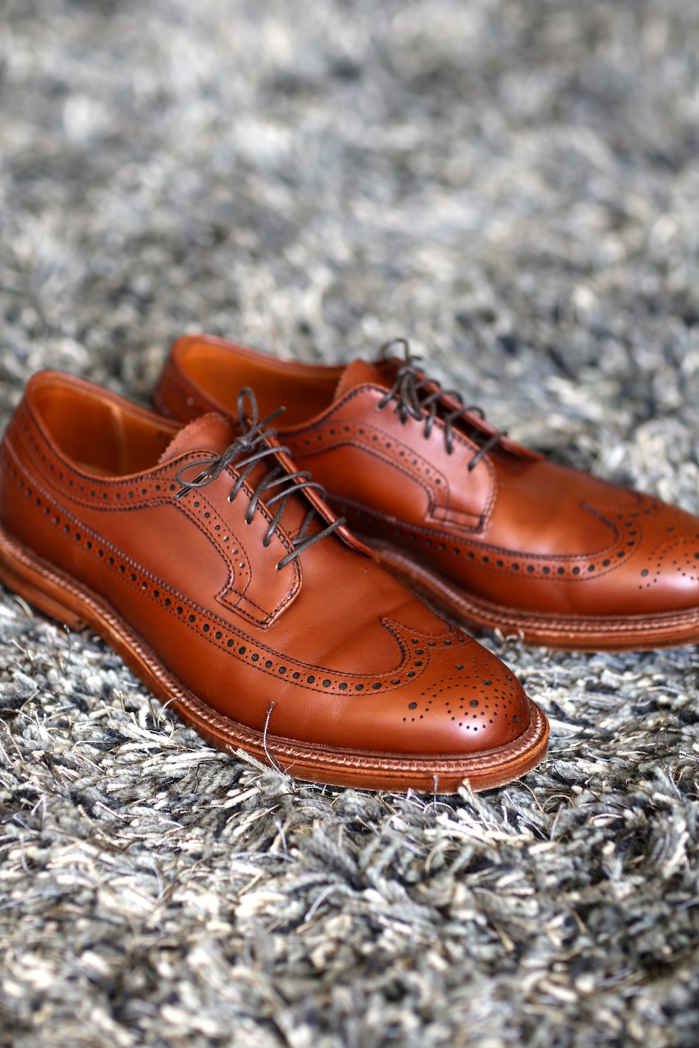 A Beautiful Pair of Alden Shoes